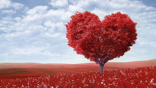 看護学生の恋愛