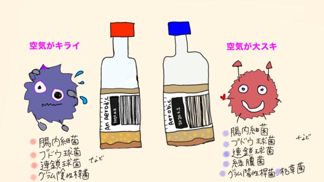 嫌気性菌と好気性菌